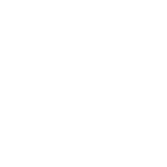 shirfar-carpet